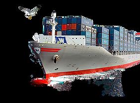 global ticaret.png