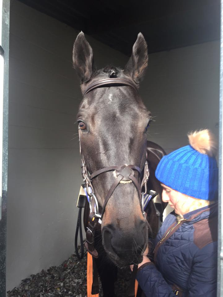 Captain Flash at Uttoxeter