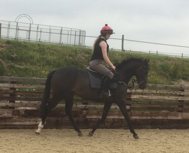 Liddy riding the Oasis Dream 2 year old