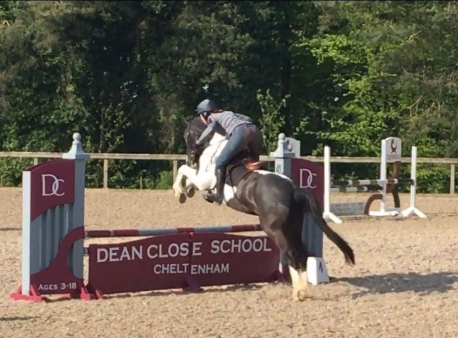 The lead horse in action