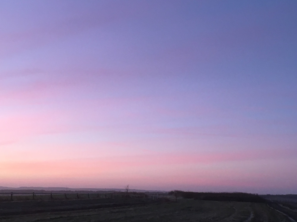 the top of the gallops at sunrise