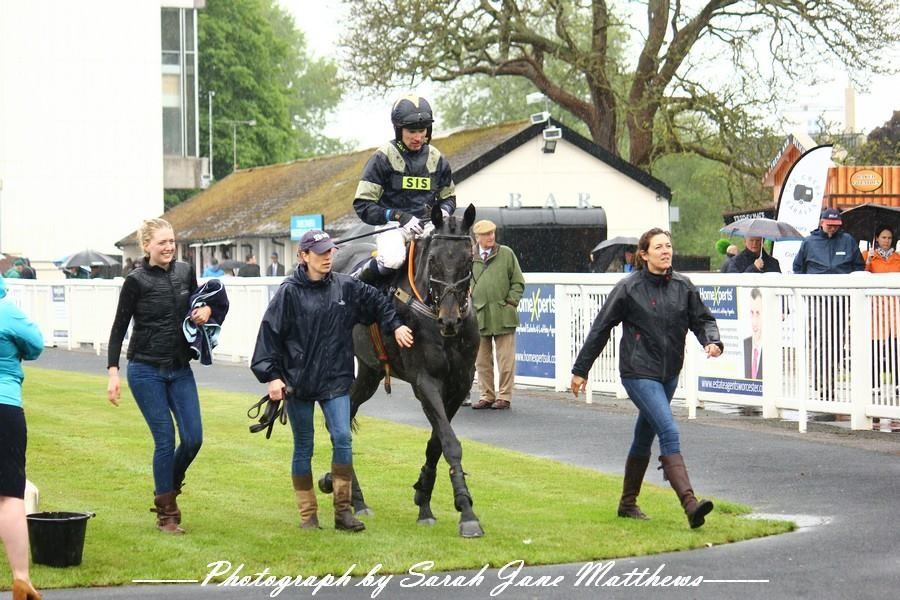 On the way to winners enclosure