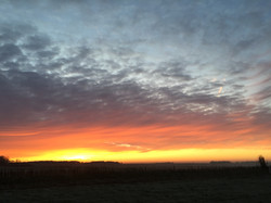 sunrise from the top of the gallops