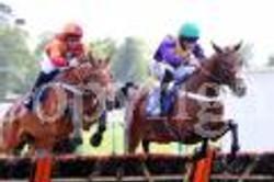 gallic winning at Fontwell