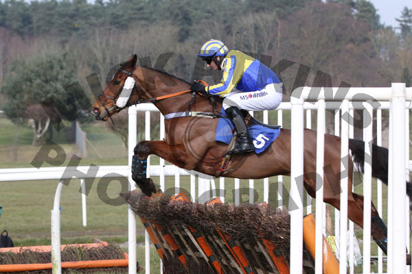 Starfoot winning at Market Rasen