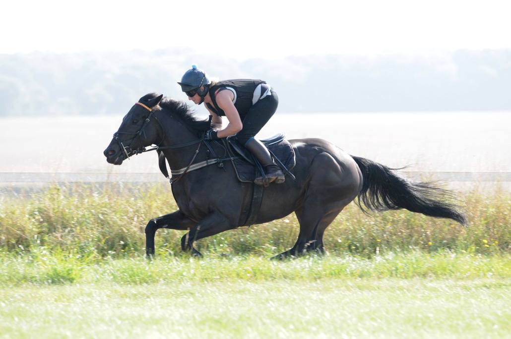 Hannah galloping Willy
