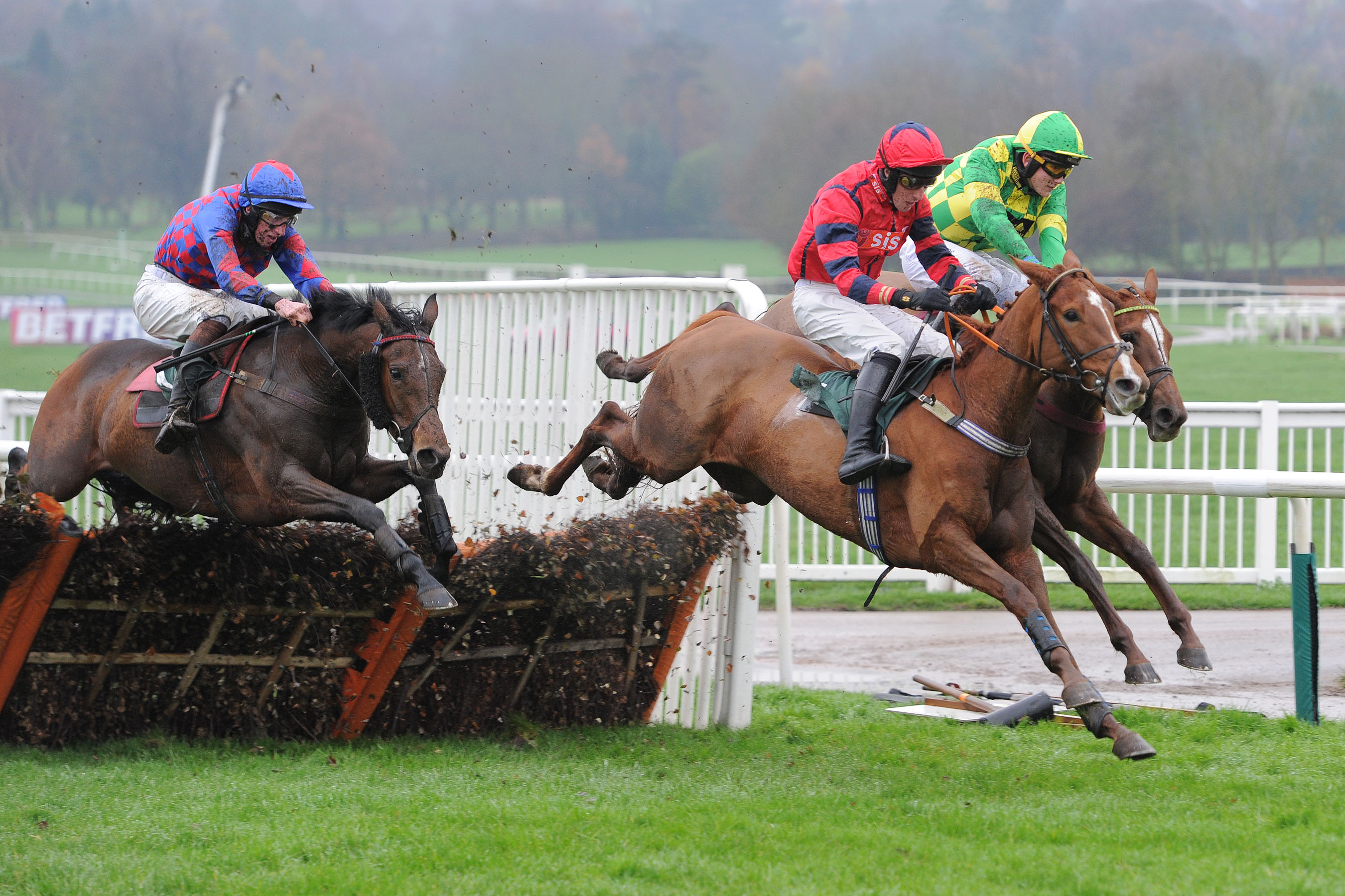 Rose of the world winning at Uttoxeter