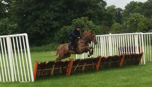 Marmont first time over big hurdles