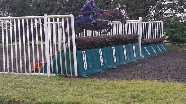 Alan schooling fences 2.jpg
