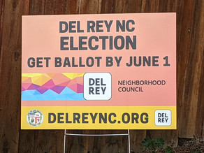 Get Your Ballot + Meet the Candidates for the DRNC Board!