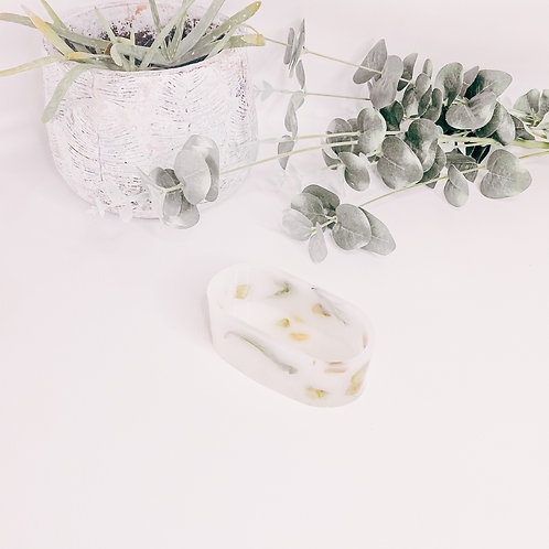 Pot NATURE, plantes, small...