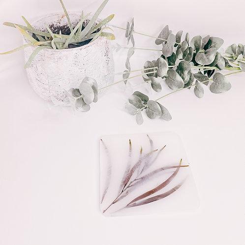 Plateau NATURE, plantes, small...
