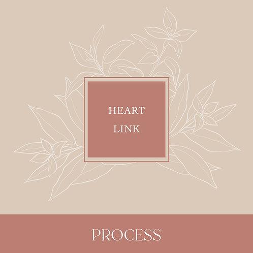 Heart Link Process