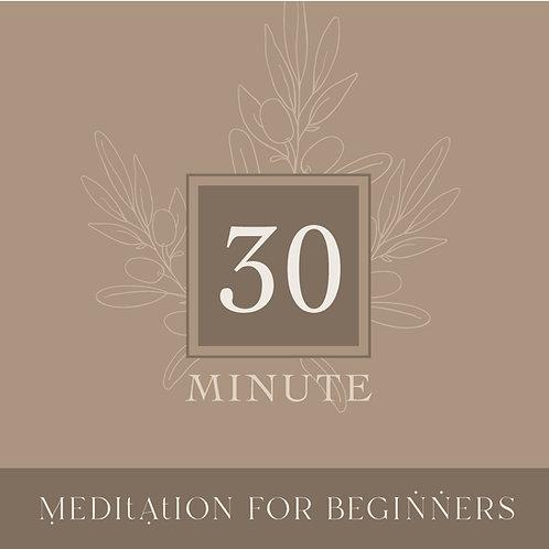 Guided Beginners Meditation