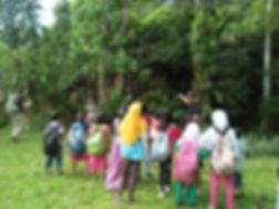 Kids looking at orangutan.jpg