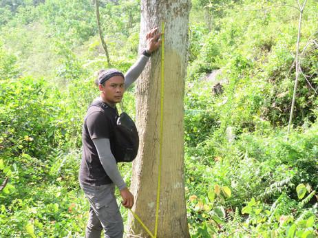 Jasson measuring gesekan gajah.jpg