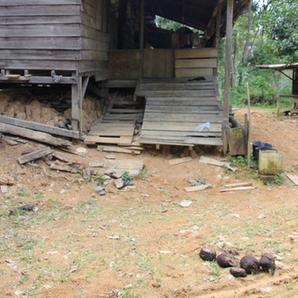 Dwelling damage caused by Sumatran elephants