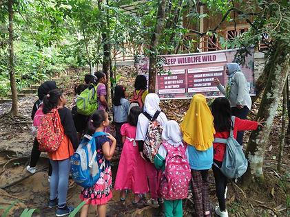 Kids in forest Jan 2019.jpg