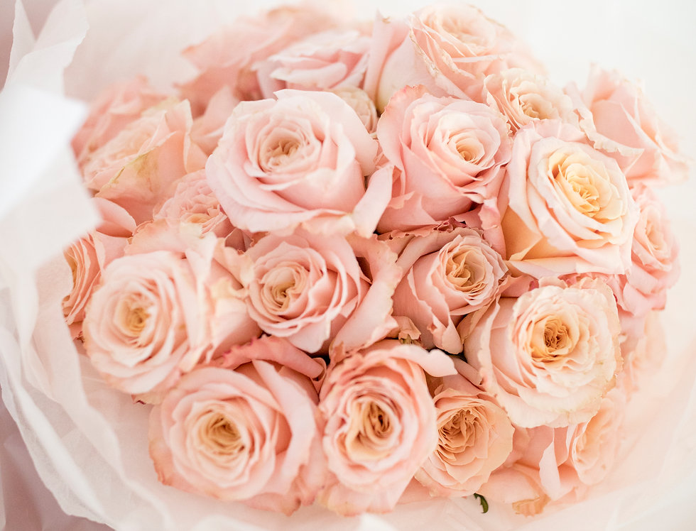 Pink Shimmer Roses