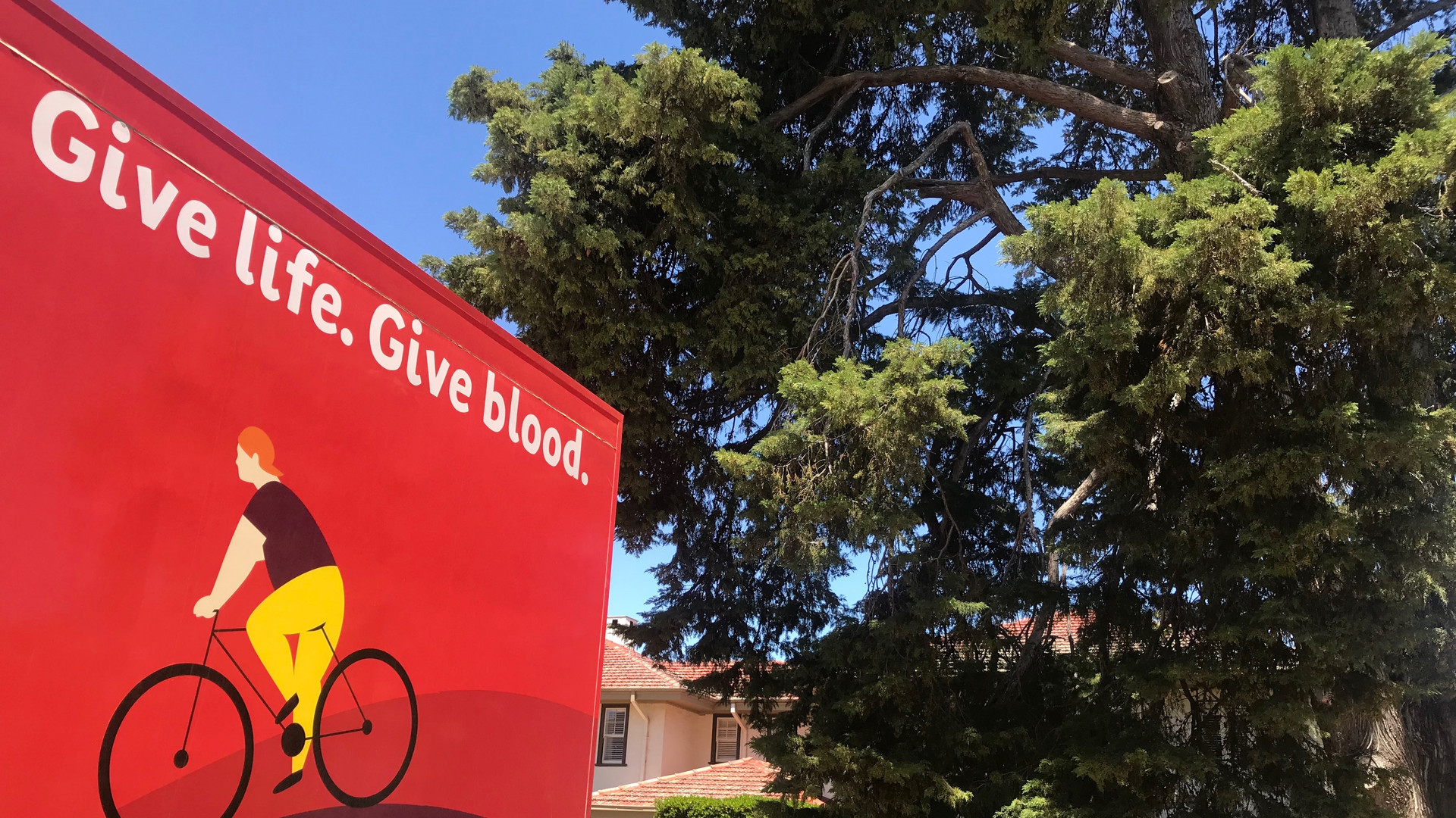 Give Blood Save Lives by Karin Calford.jpg