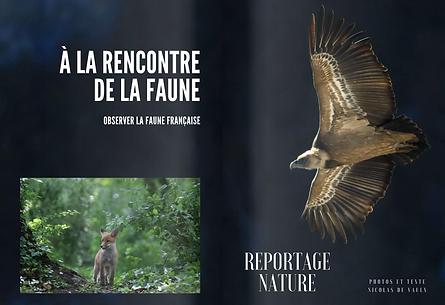 reportage_nature_numéro_5_regard_peupl