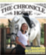 homephoto-chronicle-of-the-horse.png