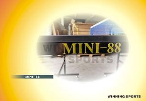 MINI-88.jpg