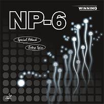 NP-6.jpg