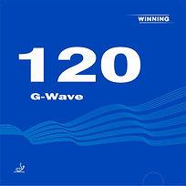 G-Wave 120.JPG