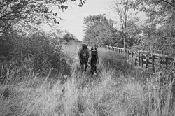 Senior girl, with horse