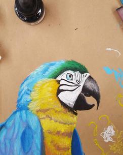 Parrot Oil Pastel