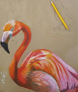 Flamingo Oil Pastel