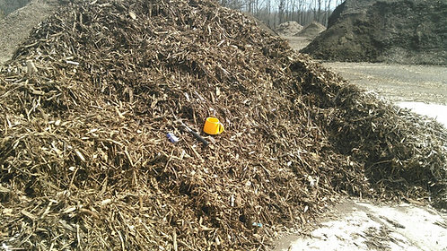 raw mulch (wood chips )  tree chipping