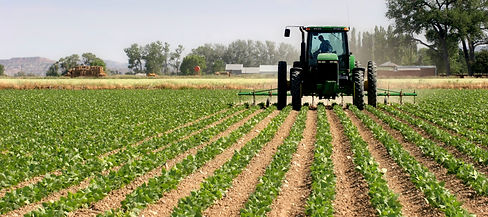Agriculture-Tractor-Plowing-Fields_edited.jpg
