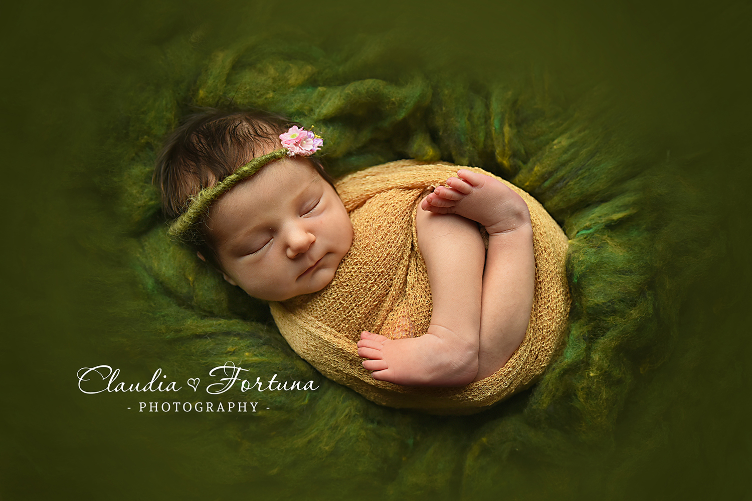 miami newborn photographer