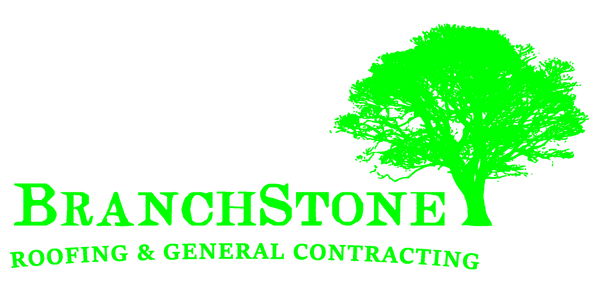 Branch Stone Logo Seahawk Green_edited.p