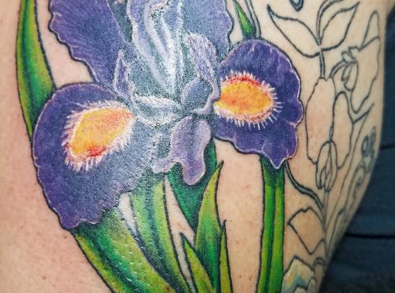 peavine and iris
