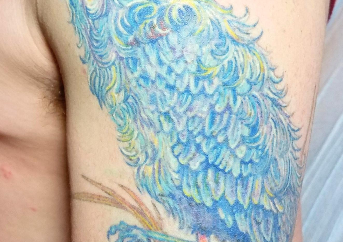 blue heron 3