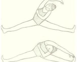 Exercice Makko Ho - Le Printemps - Foie/Vésicule biliaire
