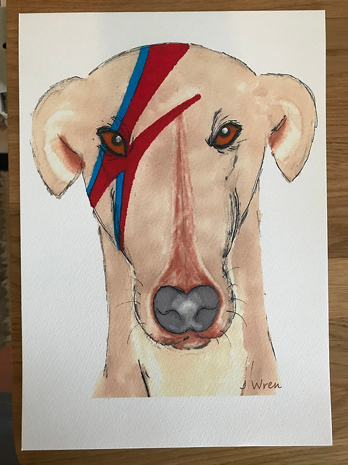 Print - A4 Ziggy Stardog (unmounted and unframed)