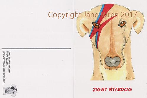 Postcards - Ziggy Stardog - Pack of 10