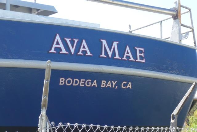 Ava Mae