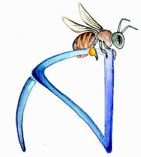 A - abeille.jpg
