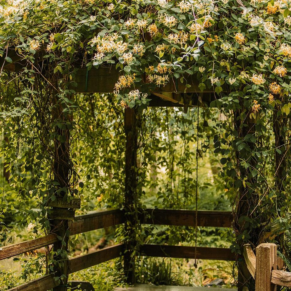 weddingbell.jpg