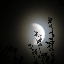 Releasing turbulent emotions during the Partial Lunar Eclipse in Capricorn
