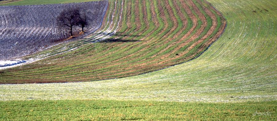2000-PAYSAGES-5-gerard-Besson.jpg