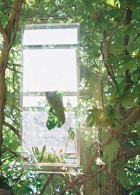 Maxim Sinclair, '942', 2018, 35mm Film, 10.2x7.6cm