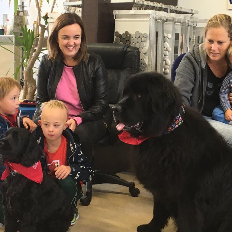 MuKs unterwegs - Therapiehunde
