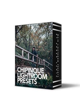 CHIPINQUE FOREST PRESETS | 3 Lightroom Presets
