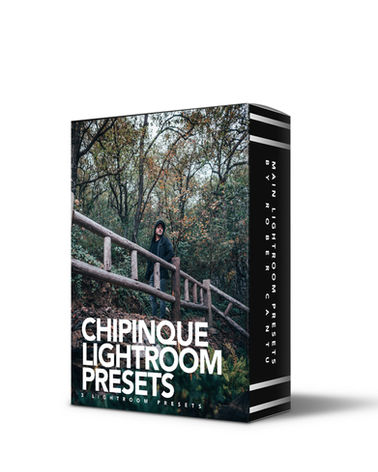 CHIPINEQUE FOREST | LIGHTROOM PRESET